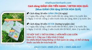 Hdsd Giam Can Detox